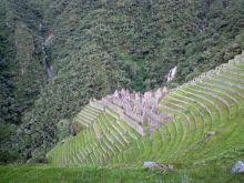 Winay Wayna