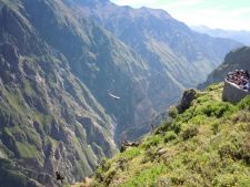 Condor Watching in the Colca Canyon