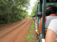 Ecological train in Iguazu Falls National Park, Argentina