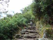 Inca Trail at Machu Picchu