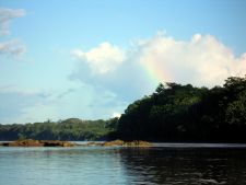 On the Tambopata River